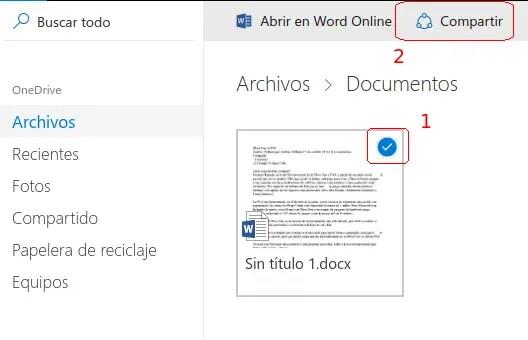 documento seleccionado de OneDrive
