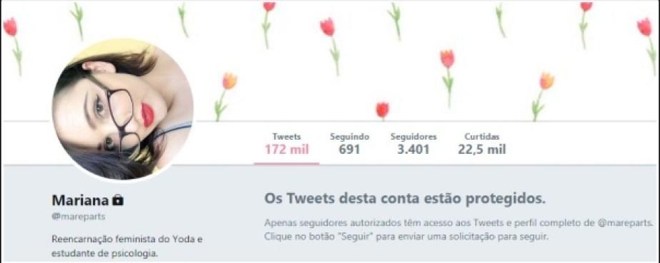 perfil privado de twitter
