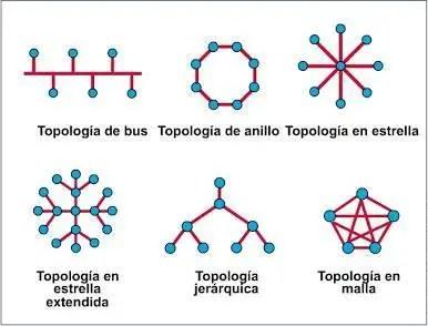 tipos de topologías