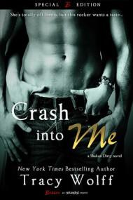 Crash Into Me cover - (un)Conventional Bookviews