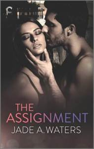 The Assignment cover - (un)Conventional Bookviews