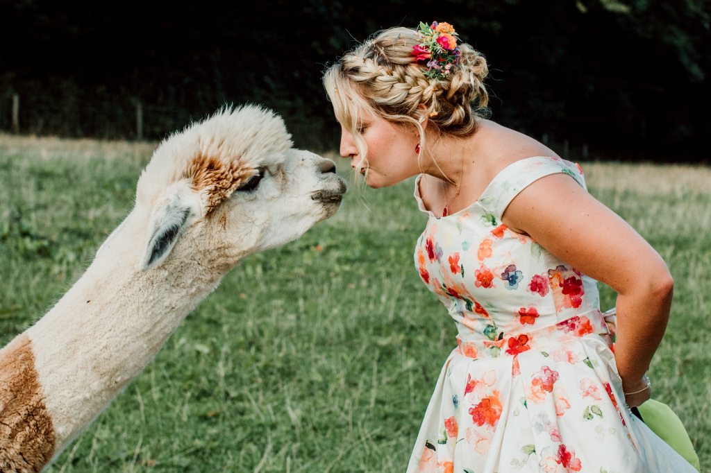 Alpaca Yurt Wedding- Kisses