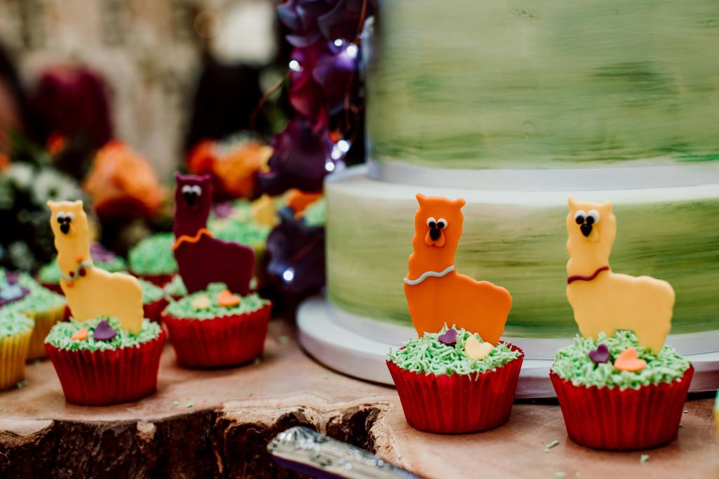 Alpaca Yurt Wedding- Cupcakes