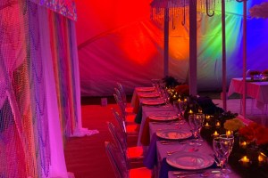 Medici Design Weddings And Events - Unconventional Wedding - 7