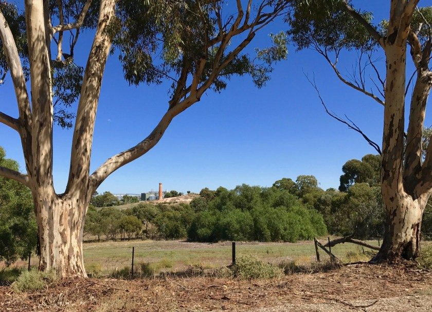 View from Cameron lookout towards the Mine Chimney, which provided updraught for the boilers of the mine pumping engine.