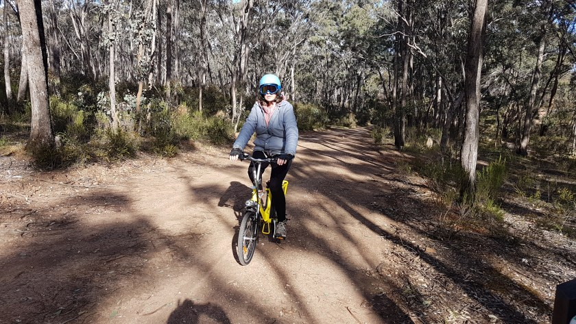 Castlemaine to Maldon Trail - Fe cycling through a lightly wooded forest towards the camera