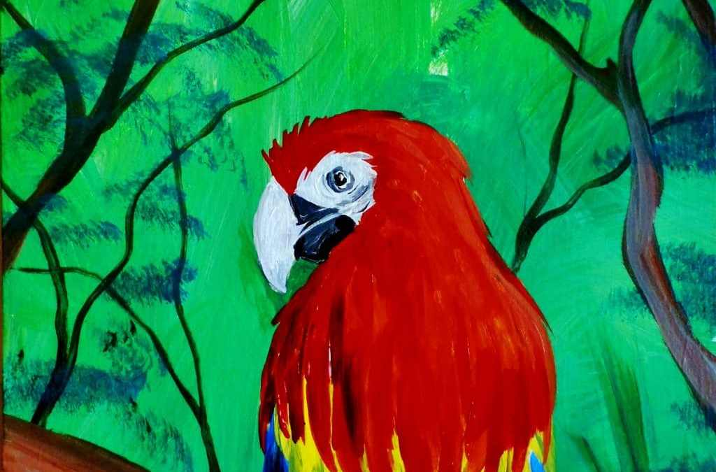 Macaw Parrot