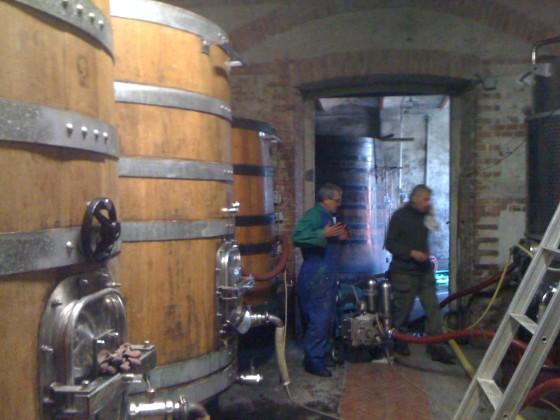 Rinaldi cellar1