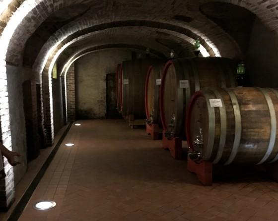 aging cellar