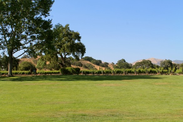 Manicured grounds at Fess Parker are ideal for picnics and wine tasting!