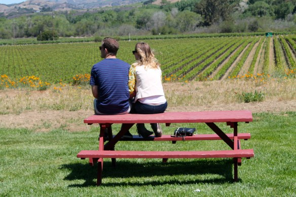 Bring a picnic lunch and stay a while at Lafond Winery and Vineyard!