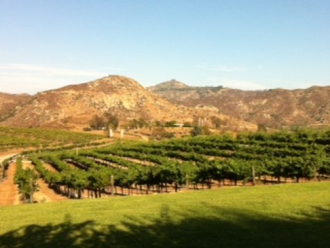 Orfila Vineyard and Winery specializes in Rhone-style wines