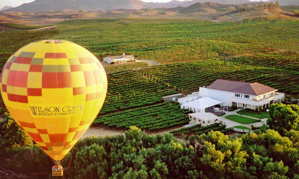 Content_BalloonWithVineyards_200910