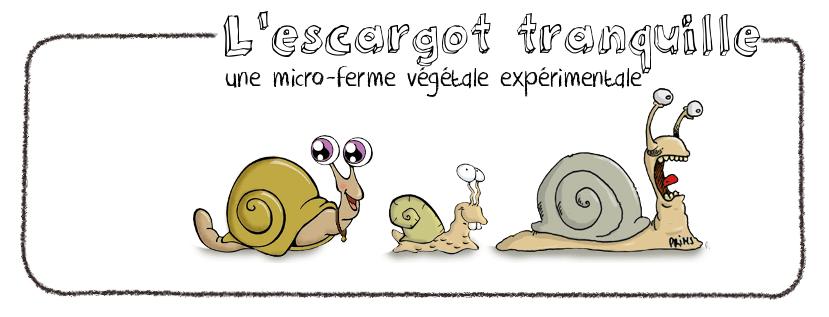 escargot tranquille