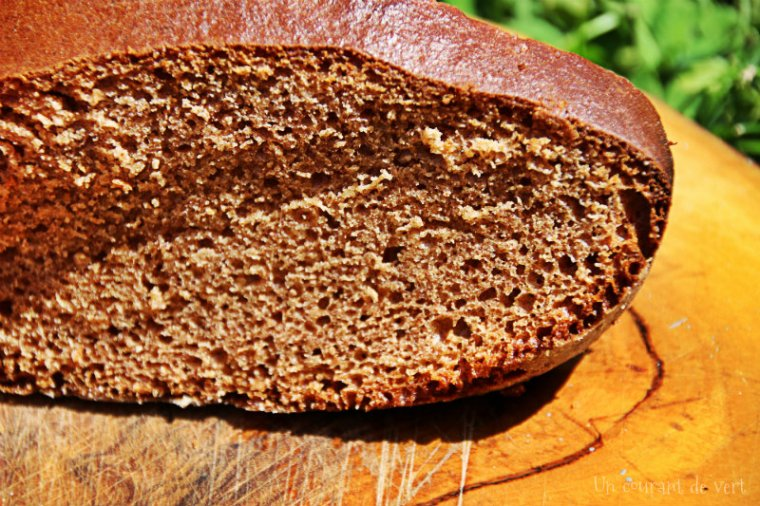 sponge-cake vegane 2