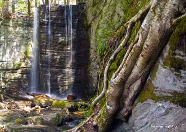 Hector Falls in the Allegheny National Forest of Warren County, PA
