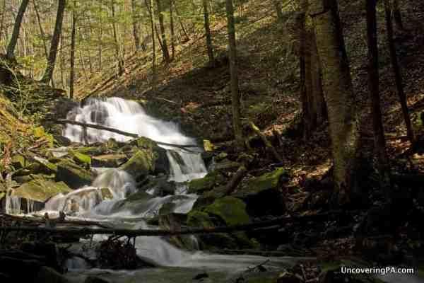 Weekend in Meadville, PA: Hiking in Oil Creek State Park