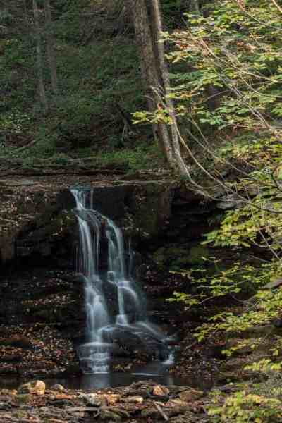 Where is Dry Run Falls near Worlds End State Park in Pennsylvania