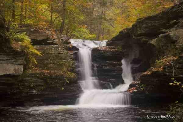 Murray Reynolds Falls in Ricketts Glen State Park in Pennsylvania