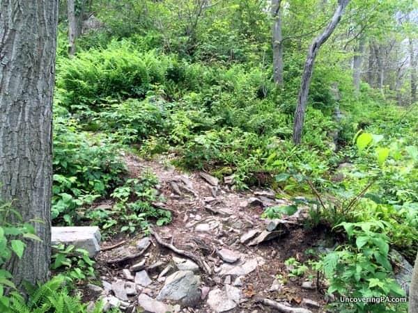 Hiking to Cove Mountain Overlook