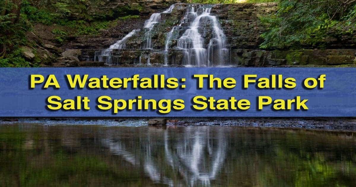 Waterfalls-of-Salt-Springs-State-Park-Pennsylvania