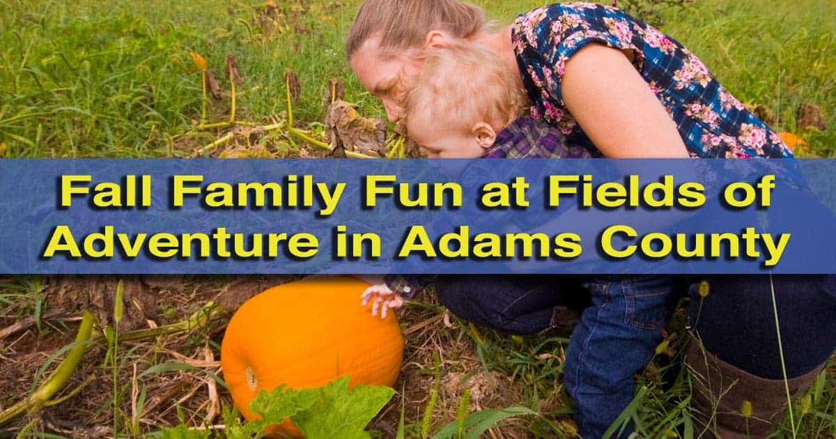 Fields-of-Adventure-in-Adams-County-PA