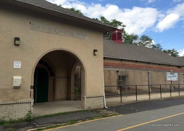 Nay Aug Park Zoo Scranton PA