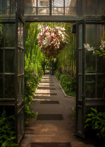 Conservatory at Longwood Gardens in Kennett Square, Pennsylvania.