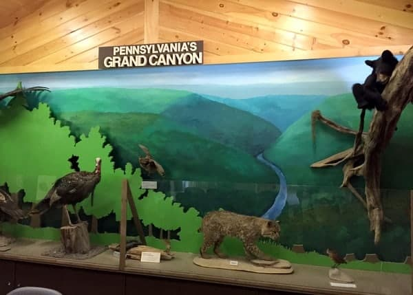 Leonard Harrison State Park Museum