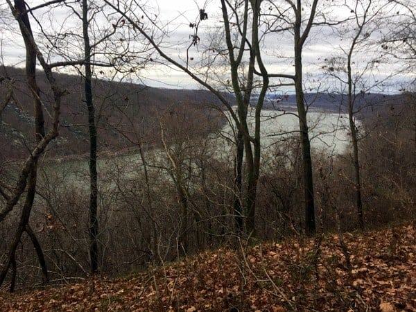 Susquehanna River from State Game Lands 181