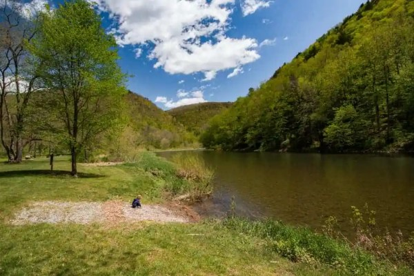 Pine Creek Rail Trail Campground: Tiadaghton