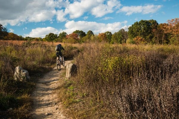 Things to do in Wissahickon Gorge: Mountain Biking in Houston Meadow