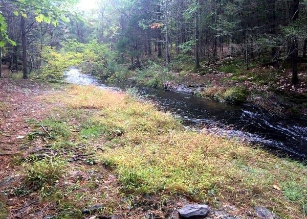 Hiking the Hornbecks Trail in Pike County, PA.