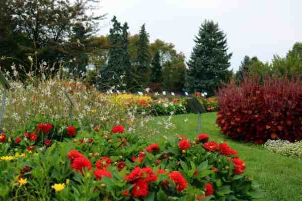 Test beds at Hershey Gardens