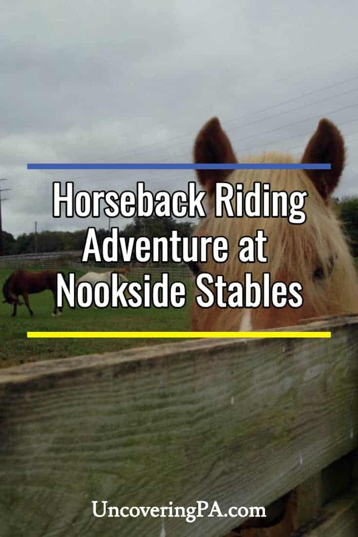 How to 'Survive' Nookside Stables' Horseback Riding Adventure