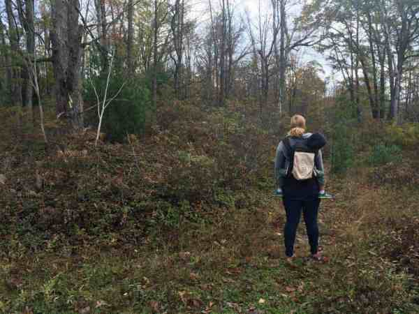 Hiking in the Quehanna Wild Area of Elk County, PA
