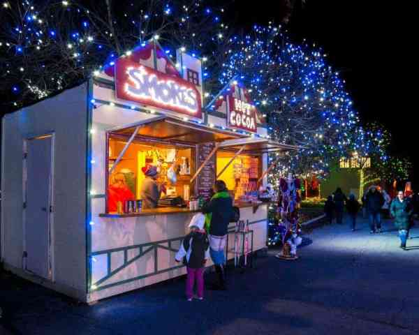 Christmas in the Lehigh Valley: Winter Light Spectacular