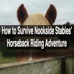 Nookside Stables in Lancaster County, PA