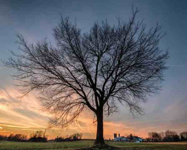 Top Pennsylvania Photos of 2017: East Lampeter Township Community Park