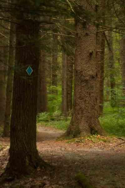 Hiking in Kooser State Park