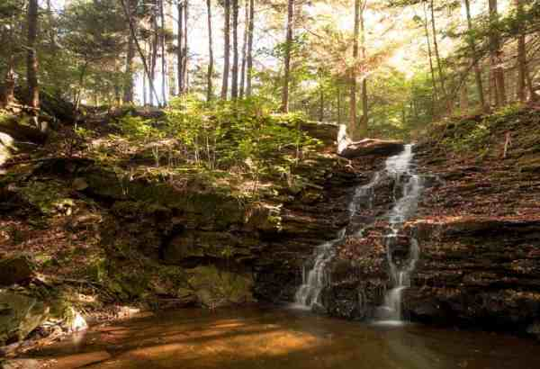 Ketchum Run Falls in Loyalsock State Forest