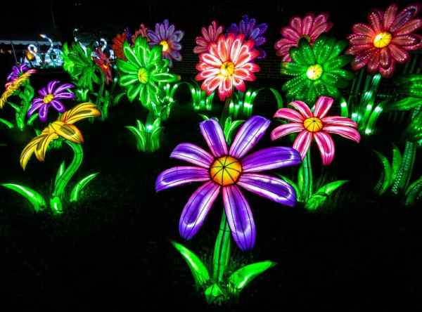 Flower Lanterns at the Philadelphia Chinese Lantern Festival