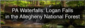 Logan Falls in Allegheny National Forest