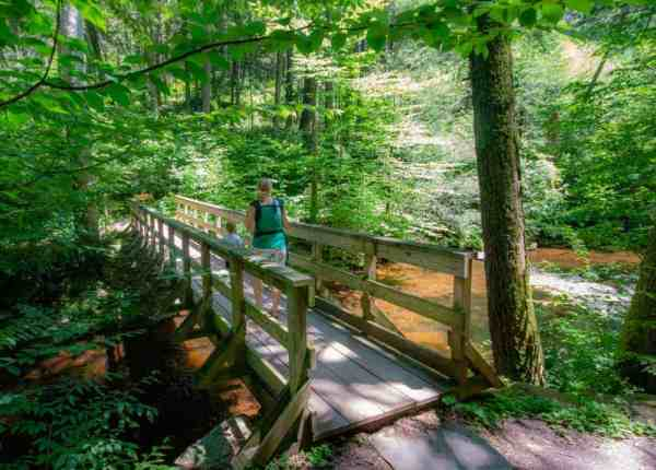 Hiking the Evergreen Trail in Ricketts Glen State Park