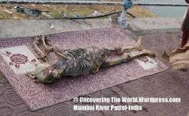 -mumbai_river_patrol_02 (11)