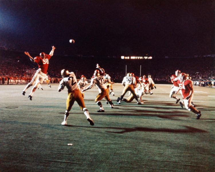 From Ashes, 1973 Irish Rose – Notre Dame Fighting Irish – Official ...