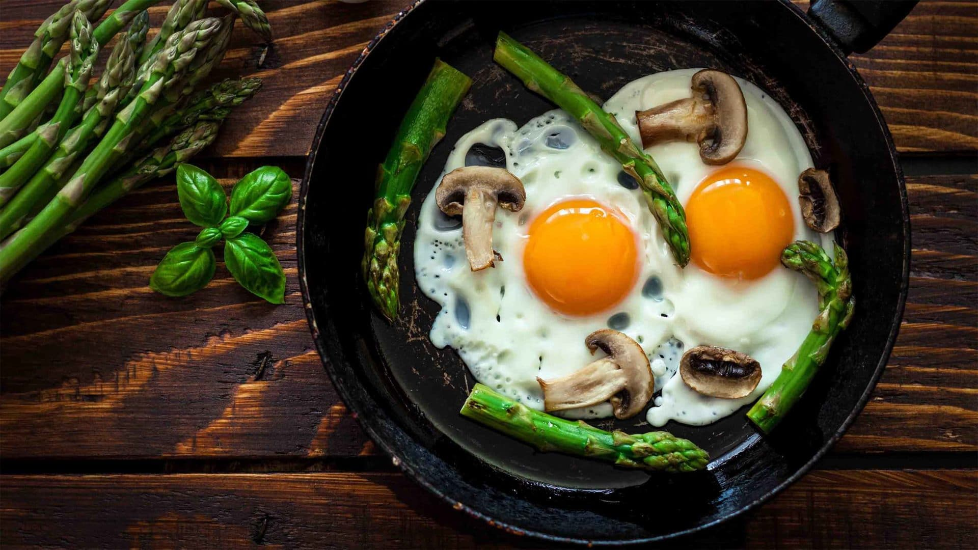 Nutrition Science Is Broken This New Egg Study Shows Why