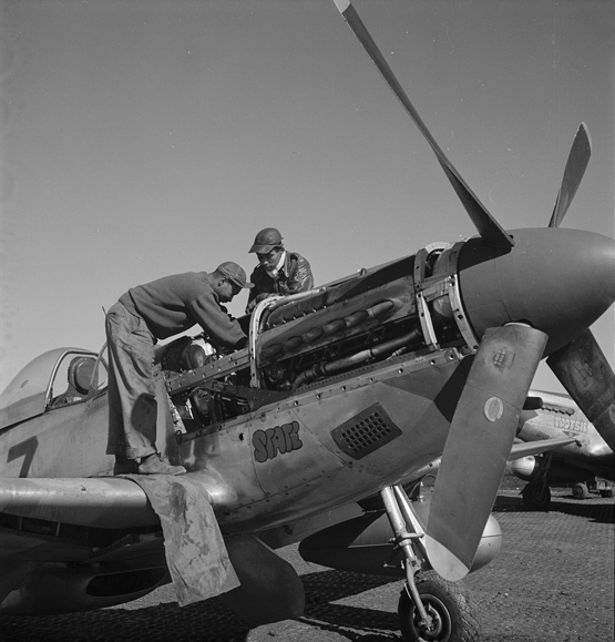 Tuskegee Airmen Marcellus G Smith and Roscoe C. Brown