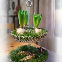 Nu har grantomtarna från skogen kommit och köksbordet har fått en ny dekoration!