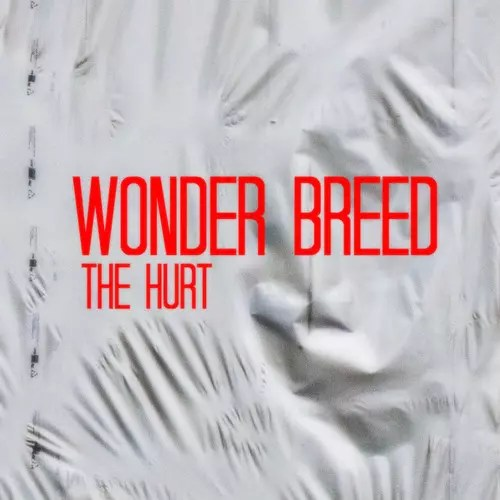 The Hurt (Prod. Wonder Breed)